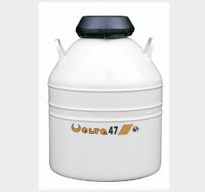 Botijão De Nitrogênio 47,7 Litros - Volta
