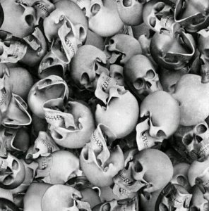 pelicula para water transfer printing modelo  cranios agrupados tamanho 1mts x 50cmts de largura