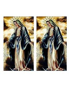 PELICULA EXCLUSIVA PARA WTP  MODELO 146  - TAMANHO A4 - 2 DESENHOS NA FOLHA A4