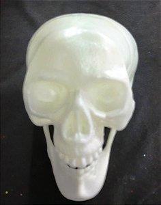 Cranio com mandibula articulada, plástico