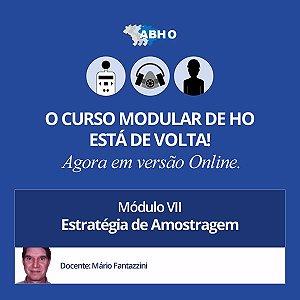 Curso Modular - Módulo VII - Estratégia de Amostragem