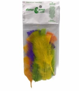 Pena Colorida com 10 unidades Sortidas Plumas
