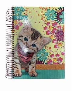 Caderno Universitário 200 folhas Capa Dura Pet - Jandaia