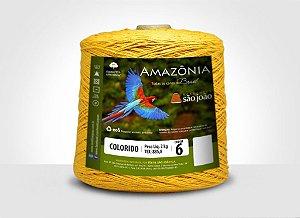 Barbante Amazônia 6 fios Cor 1 Mostarda 2 kg