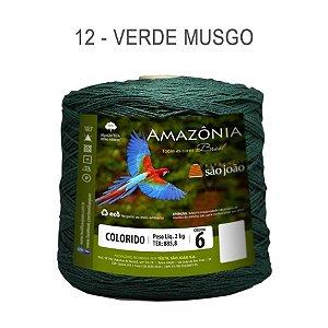 Barbante Amazônia 6 fios Cor 12 Verde Musgo 2 kg