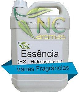 Essência HS 5Lt P/ Produtos De Limpeza E Aromatizantes 1/200