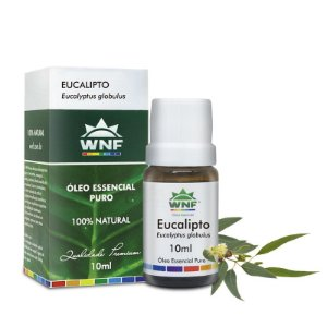 Óleo Essencial Natural de Eucalipto Glóbulus 10ml – WNF