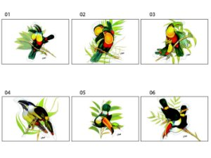 Jogo Americano Retangular - Tucanos - (Conjunto de 6 unidades)