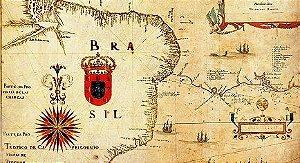 Painel e Quadro Magnético Mapa do Brasil 100x50cm