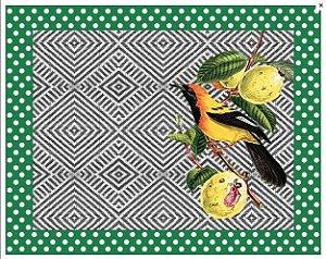 JA - EM PAPEL Pássaros Brasileiros 8 unidades - Sendo 4 de cada imagem.