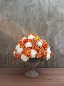 Hortênsias laranja e branca (Hydrangea)