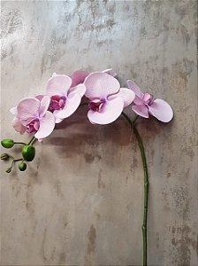 Orquídea Phalaenopsis Rosa Premium/Toque real