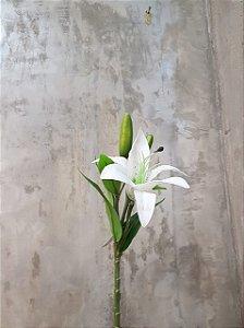 Lírio Branco(Lilium alexandrae) Premium/Toque real