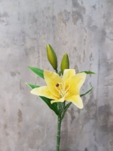 Lírio Amarelo(Lilium alexandrae) Premium/Toque real