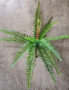 SAMAMBAIA 50CM SY01020