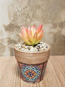 Mini Suculenta - Vaso de Argila