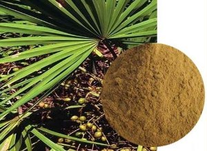 Serenoa repens S. c/ 100g,-,-,-,Afrodisiacos Naturais