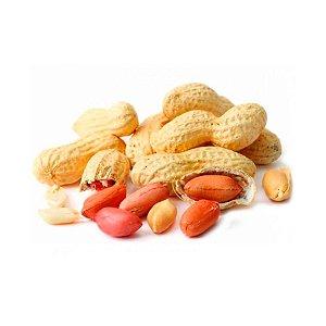 Amendoim Cru com Casca Premium
