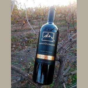 Vinho Montetronador Special Edition Cabernet Sauvignon
