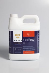 Remo astroflower 1 L