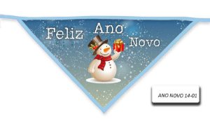 ANO-NOVO-14-01