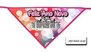 ANO-NOVO-14-04