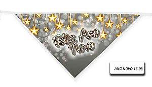 ANO-NOVO-16-03