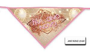 ANO-NOVO-19-04