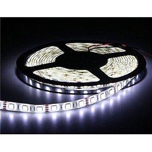 Fita LED 5050 Branca 12V SEM Silicone