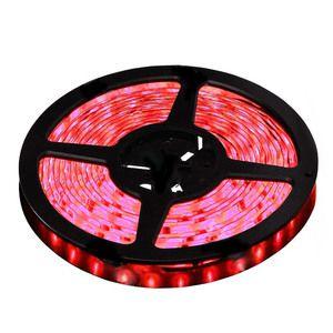 Fita LED 5050 Vermelha Rolo 5 MTS