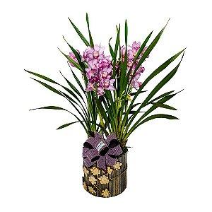 Exótica Orquídea Lilás