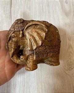 Elefante em Gesso