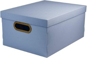 Caixa Organizadora Dello Linho 380X290X185 mm Azul Claro 20,