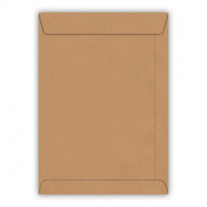 Envelope Kraft 176X250mm Foroni caixa com 250 unidades