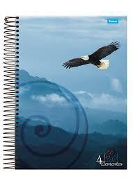 Caderno Foroni 10X1 4 Elementos Águia 200 folhas