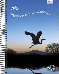 Caderno Foroni 10X1 4 Elementos Ar, Mente, Evolução 200fls