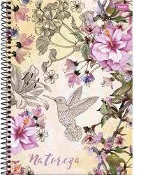 Caderno Foroni 10X1 Natureza Beija Flor 200 folhas