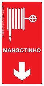 Placa Fotoluminescente - Mangotinho