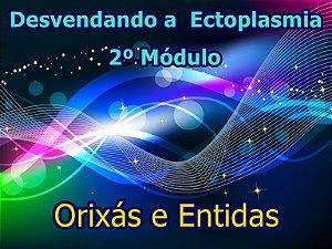 Ectoplasmia 2º Modulo