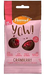 Yow cranberry com chocolate 72% cacau FLORMEL 40g