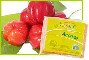 Polpa de Acerola - 4 unidades de 100 g.