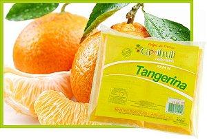 Polpa de Tangerina - 5 unidades de 100 g.