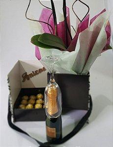 Orquidea 1 Haster -  Chandon - 16 Ferreros