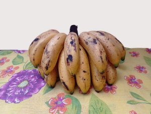 Banana Ouro 1 kg