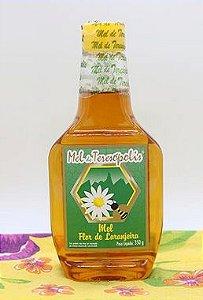 Mel Florada de Laranjeiras 350 g