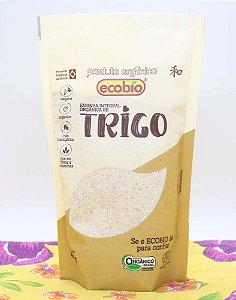 Farinha de Trigo Integral 400g