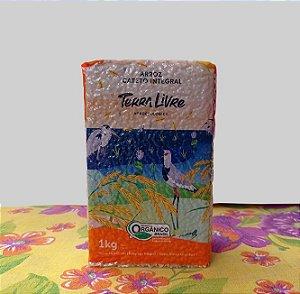 Arroz Cateto Integral Terra Livre 1 kg