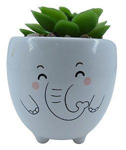 Elefante Vaso Carinha C/ Suculenta 4881