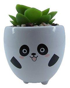 Panda Vaso Carinha C/ Suculenta 4881
