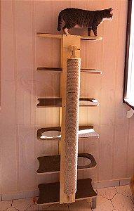 Torre Furada Com Arranhador